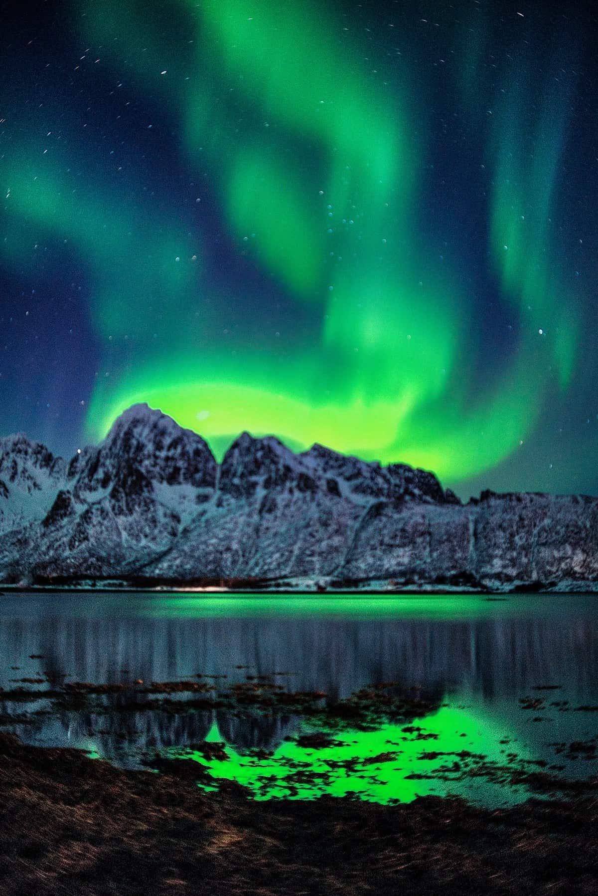 PolarlichterJagd auf den Lofoten