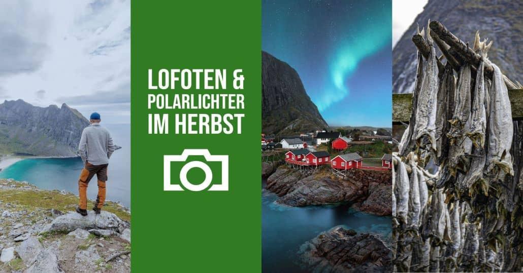 Lofoten und Polarlichter Fotoreise im Herbst